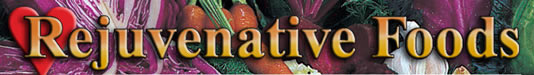 Rejuvenative Foods logo